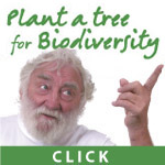 Plant a tree for biodiversity